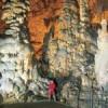 Tour to Postojna Cave