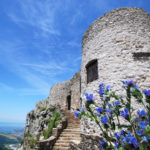 Historical & Cultural Heritage Tour of Istrian Region